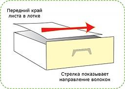 Направление волокон на листе «LG» (Long Grain) и «SG» (Short Grain)